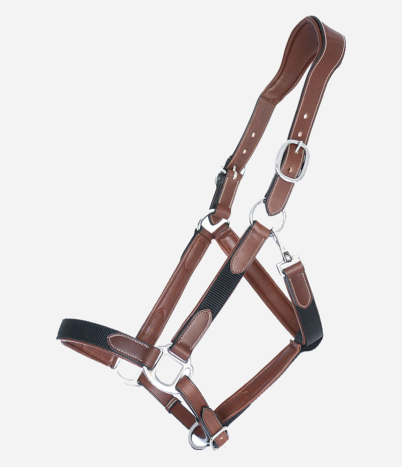 Rope Halter with Lead Rope