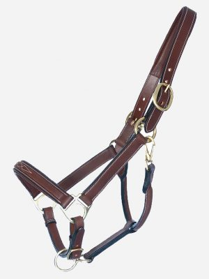 Classic Halter with Lead Rope