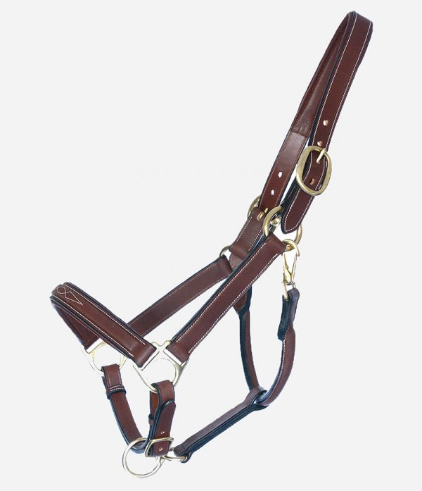 Arion Horse Sport Tack_Classic Halter with Lead