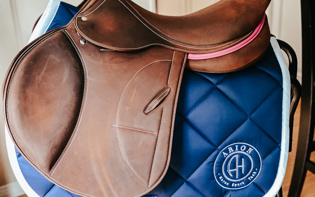 Your custom saddle by Arion Hst !