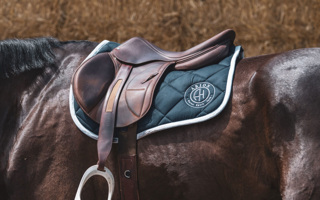 Why choose an Arion saddle rather than another?